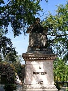 Avelar Brotero.jpg