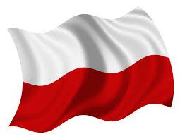 Image result for polish flag
