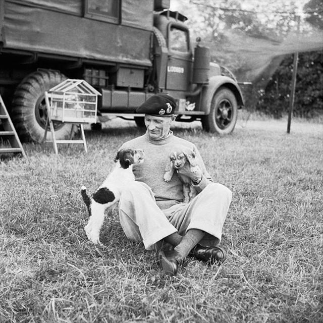 Montgomery et ses deux chiens
