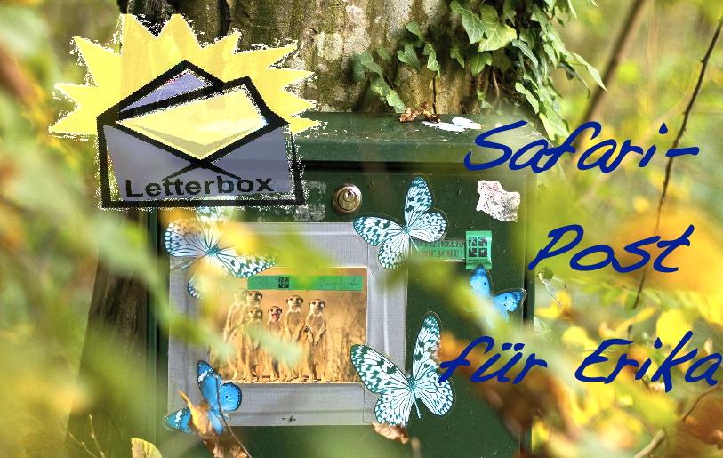 Safari-Post