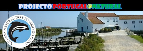 http://portugal_natural.blogs.sapo.pt/
