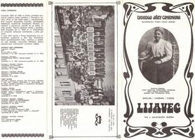 Program hry Lijavec
