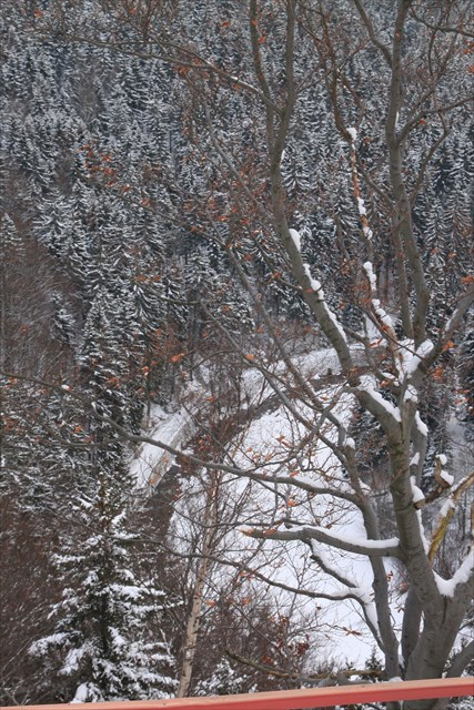 Schwarzwassertal im Winter
