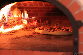 Image result for wood fired pizza oven