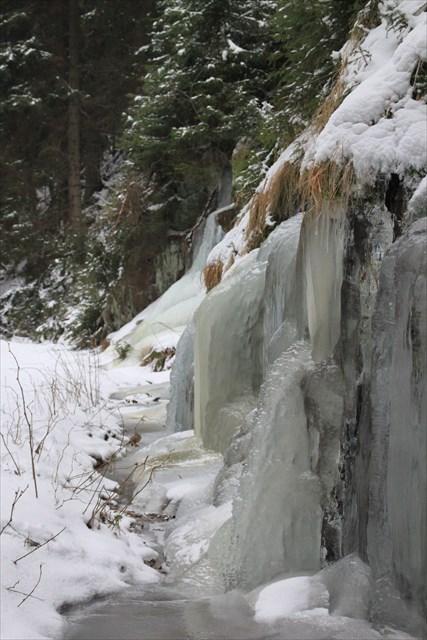 Winter im Schwarzwassertal