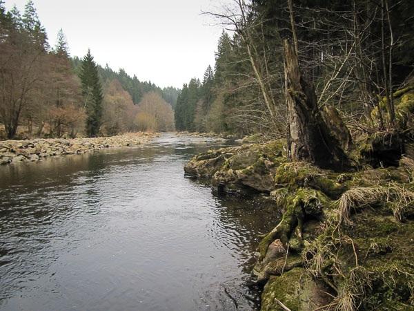 Drunten am Fluss