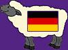 Sheep German
