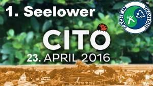 1. Seelower CITO - ich war dabei!