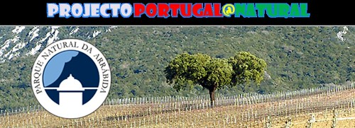http://portugal_natural.blogs.sapo.pt/